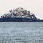 Ortac von der Clonque Bay (Alderney) aus gesehen